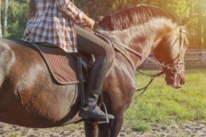 乗馬 に 由来 する ことば
